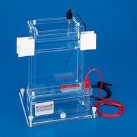 Vertical Electrophoresis Apparatus