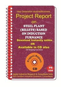 Steel Plant (Billets) Based of Induction Furnance Establishment eBook