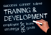 Personality Development Training Services