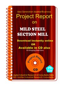 Mild Steel Section Mill Manufacturing Project Report eBook