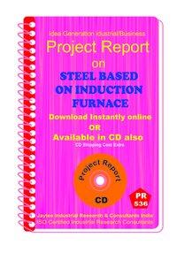 Steel Plant based on Induction Furnance Establishment eBook