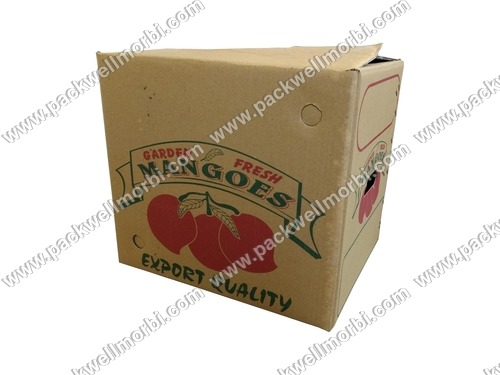 Premium Export Quality Corrugated Box for Mango
