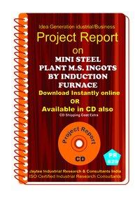 Mini Steel Plant M.S Ingots by Induction Furnace eBook
