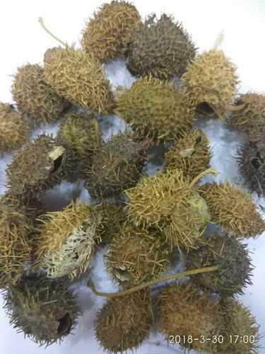 Raw Ayurvedic Herbs