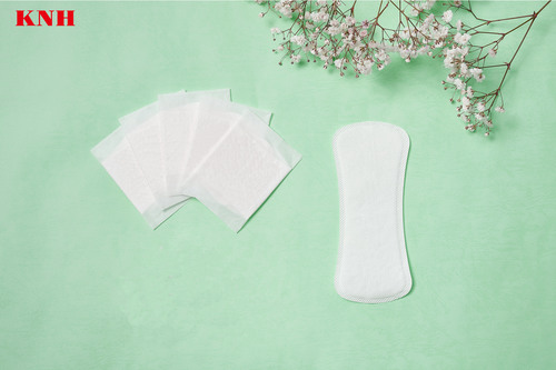 Total Care Panty Liner