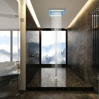 Multi Function Rain Shower