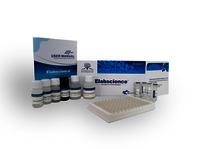 6-keto-PGF1a(6-keto-prostaglandin F1a) ELISA Kit