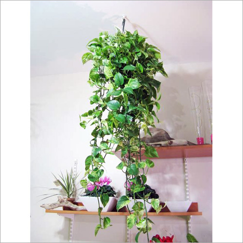 Hanging Basket Artificial Plant