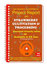 Strawberry Cultivation and Processing manufacturing eBook