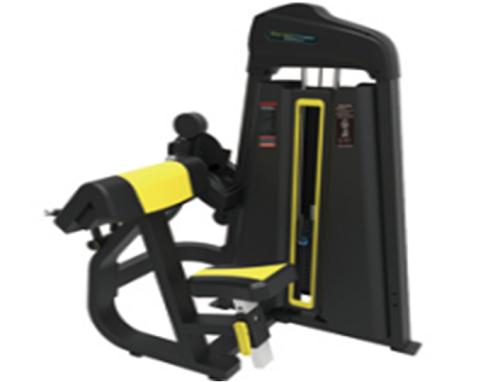 Biceps & Triceps Machine