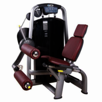 Leg Cardio Machine
