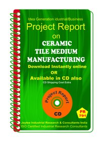 Ceramic Tile Printing Medium manufacturing eBook