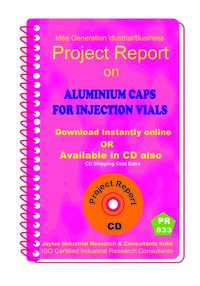 Aluminium Channels manufacturing Project Report eBook