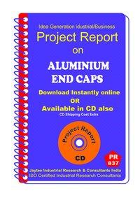 Aluminium End Caps manufacturing Project Report eBook