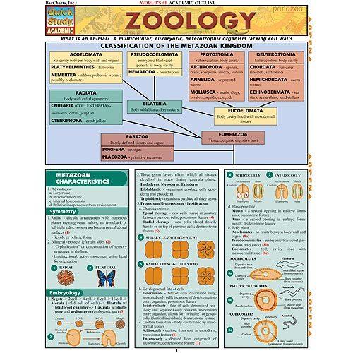 CHART, ZOOLOGY