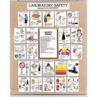 LABORATORY SAFETY CHART