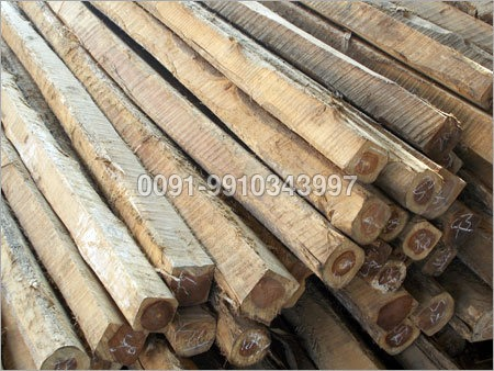 Meranti Wood Log