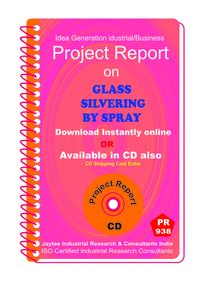 Glass Silvering by Spray Manufacturing Project Report Book