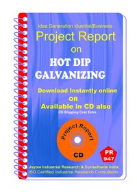 Hot Dip Galvanizing Manufacturing Project Report eBook