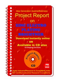 Zinc Electro Plating Brightner Manufacturing eBook