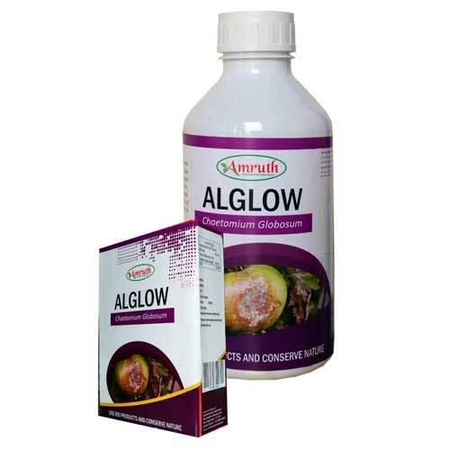 Alglow