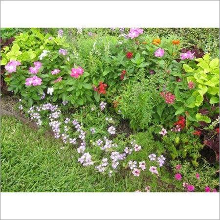 House Garden Fertilizer
