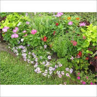 House Garden Fertilizer