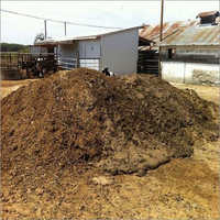 Buffalo Dung Compost
