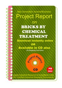 Bricks by Chemical Treatment Project Report eBook