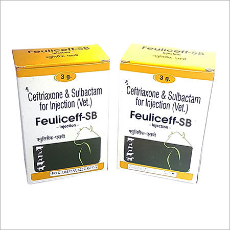 Ceftriaxone & Sulbactam Veterinary Injection