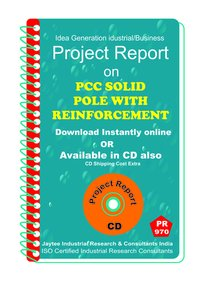 PCC Solid Pole With Reinforcement Project Report eBook