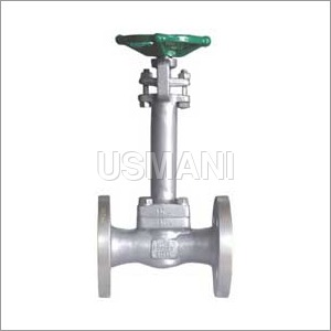 Cryogenic Valve Flanged end