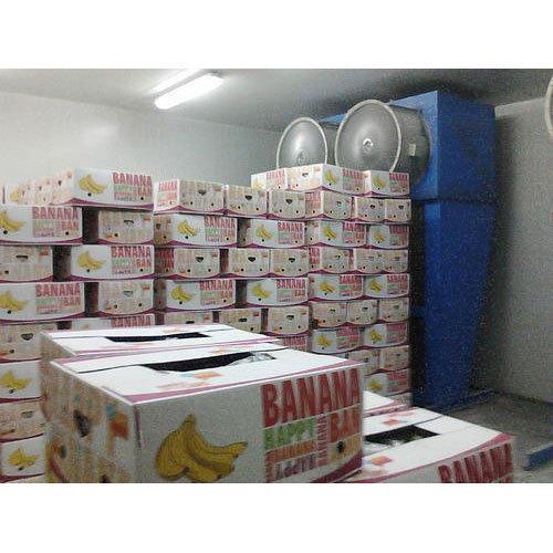 Banana Ripening Chambers