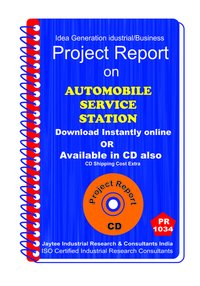 Automobile Service Station manufacturing Project Report eBook
