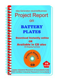 Battery Plates manufacturing Project Report eBook