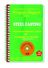 Steel Casting manufacturing Project Report eBook