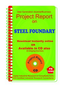 Steel Foundary manufacturing Project Report eBook