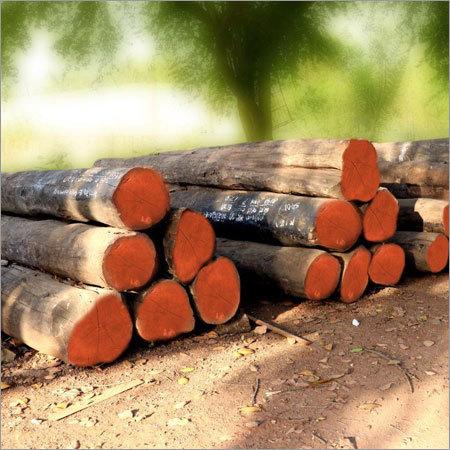 Valsadi Teak Round Logs