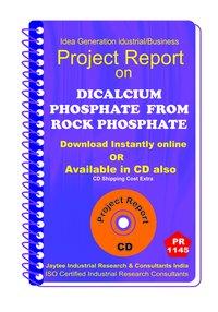 DI Calcium Phosphate from Rock Phosphate manufacturing ebook