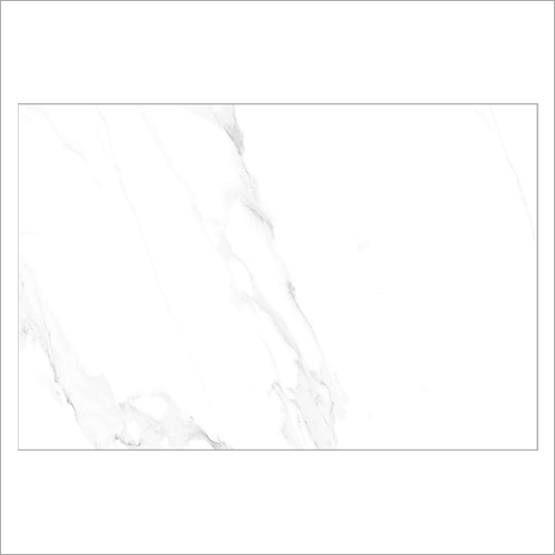 800 x 1200 MM Alvino Statuario Digital Tiles