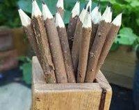 Neem Pencil $ Pen