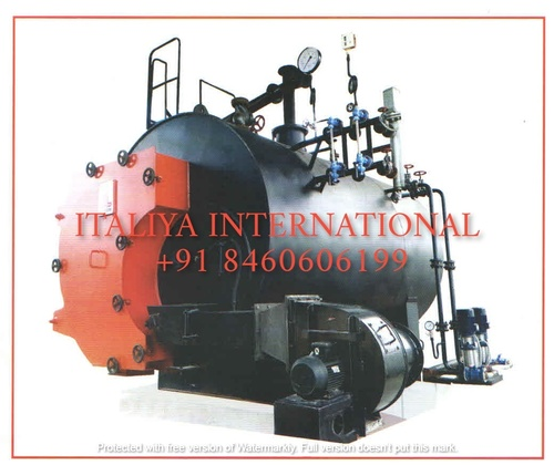 Automatic Cashew Boiler