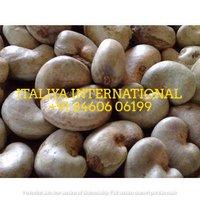 Local Raw Cashew Nut