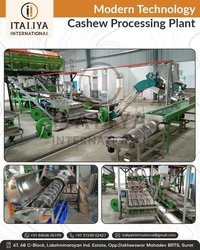 Cashew Cutting Line