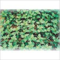 Flower Nets