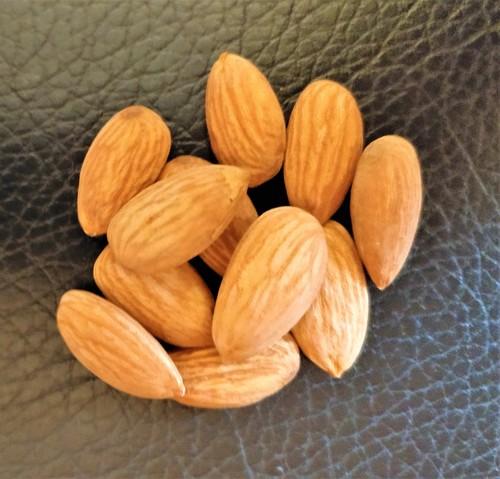 Wholesale Dry Fruits