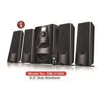 4.1 Multimedia Speaker - DM-21000