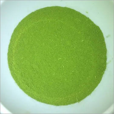 Organic Moringa Oleifera Leaves Powder
