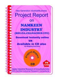 Namkeen Industry (Bhujia , Chanachur, etc ) manufacturing eBook