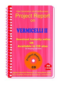 Vermicelli II manufacturing Project Report eBook